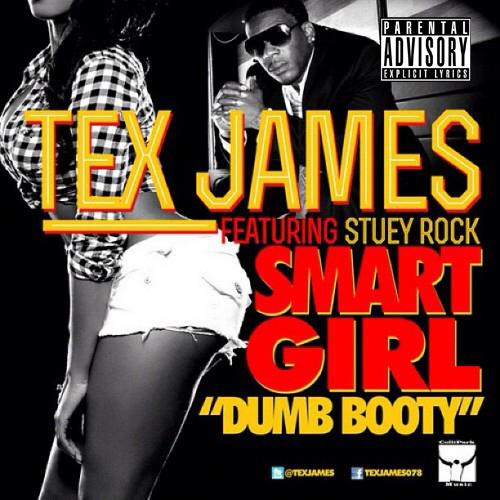 smart girl dumb booty remix