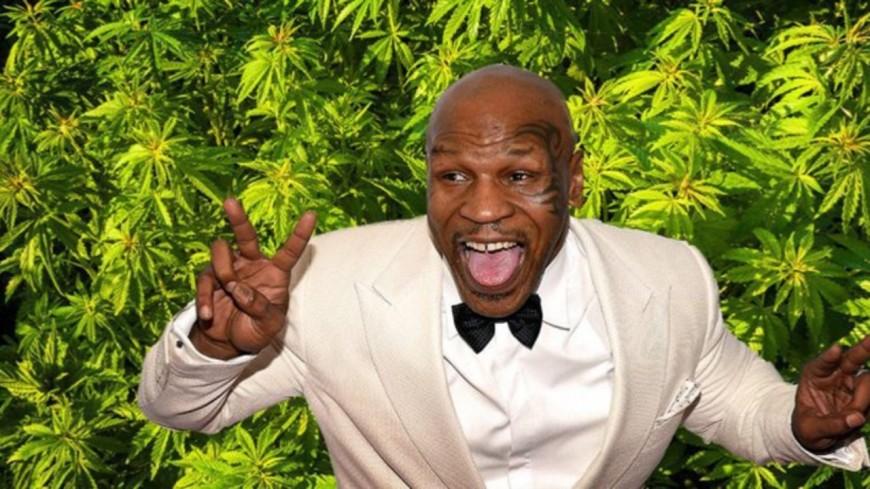 Mike Tyson: Son village vacances pour les fumeurs de weed!