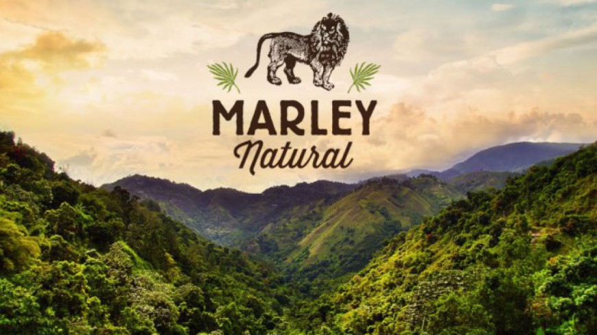 Un cannabis au nom de Bob Marley !