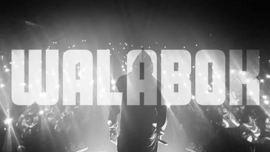 Booba avec Karim Benzema & Kalash dans le clip de ''Walabok'' !