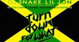 DJ Snake & Lil Jon ft Chi Ching, Assassin & Konshens - Turn Down For What (Dancehall Remix)